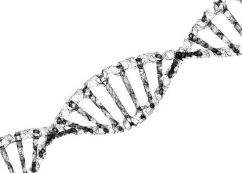 PCR Testi Nedir?